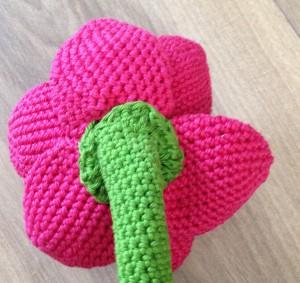 amaryllis_bloemsteel_bloem_sugarframe-300x283