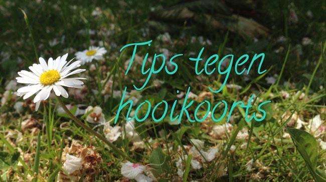 tips_tegen_hooikoorts_sugarframe