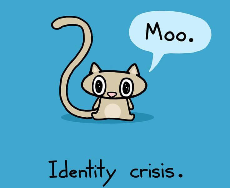 identiteitscrisis