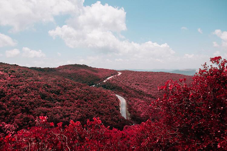 rode_natuur