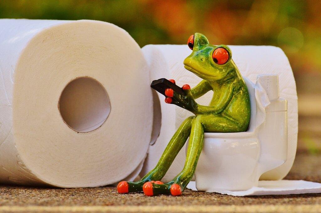 frog-1037248_1280-1024x681