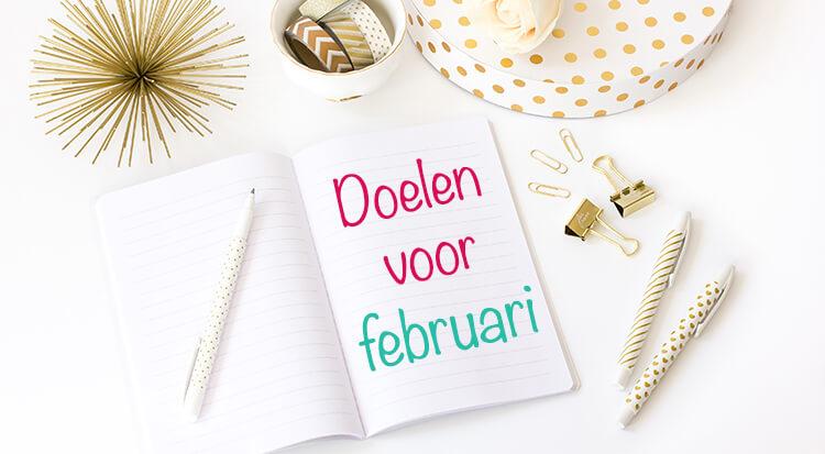 doelen februari