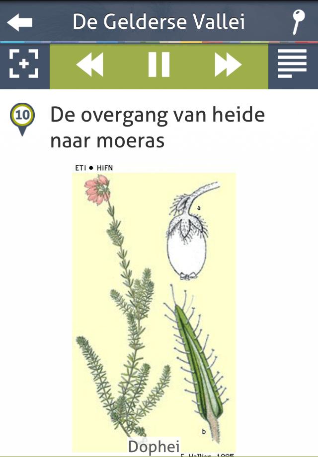 natuur in nl