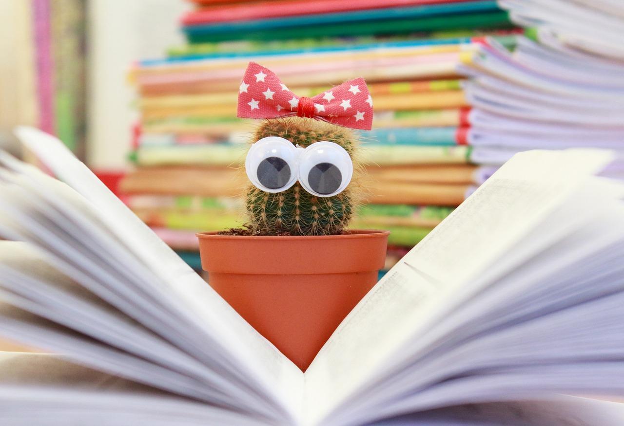 grappige boeken