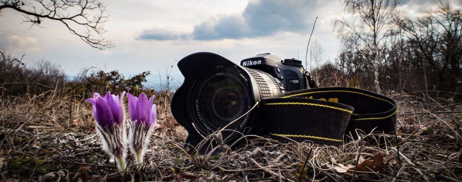 inspiratie fotografen