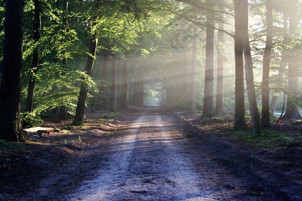 road-815297_1280-1024x682