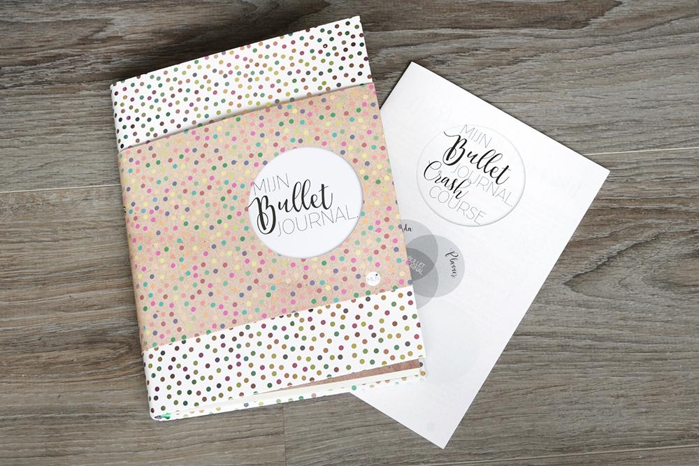 review mijn bullet journal