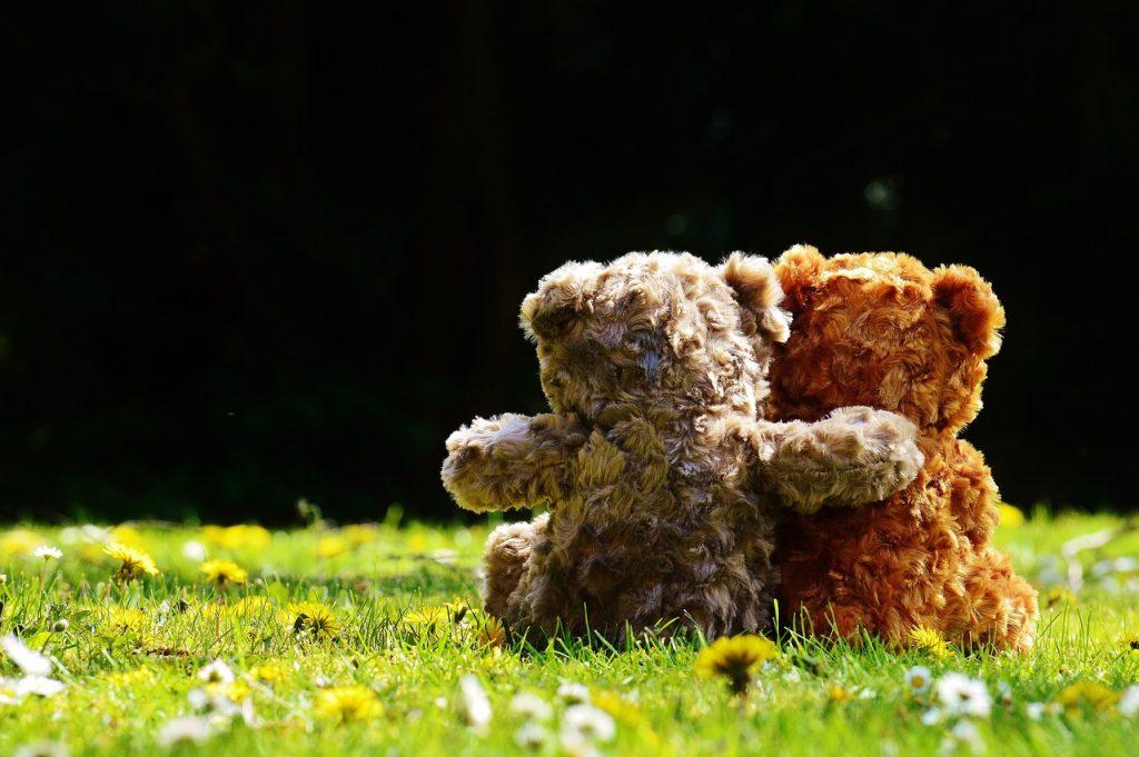 teddy-1361396_1280-1024x681